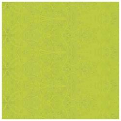 Papir ukrasni s vlaknima B2 25g Heyda 20-47185 52 svijetlo zeleni