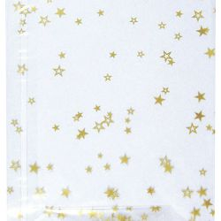 Vrećice ukrasne celofan 14x23cm sa zvjezdicama pk10 Heyda 20-30892 52 prozirne
