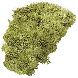 Mahovina islandska umjetna 50g Knorr Prandell 21-6694420 svijetlo zelena