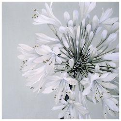 Salvete troslojne 33x33cm pk20 White beauty Herlitz 11237047!!