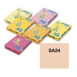 Papir A4 color pastel 80gr sa 24-boja lososa