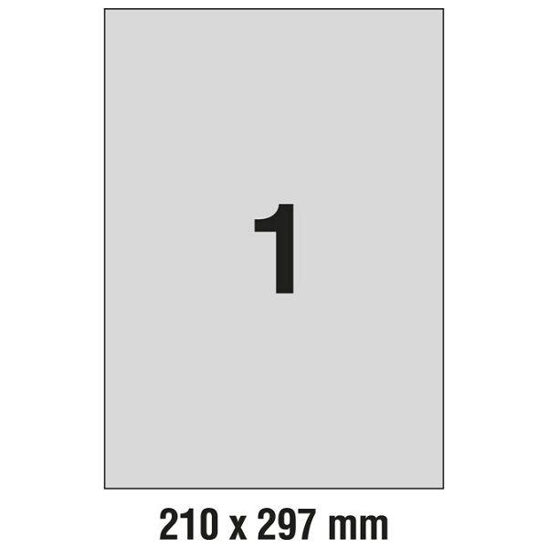 000000807_1.jpg