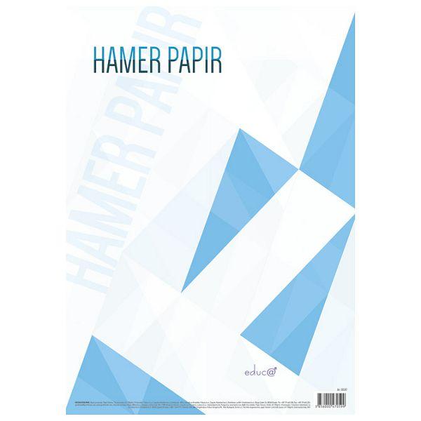 Papir Hamer B1 220g pk125 Educa