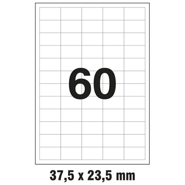 000006464_1.jpg