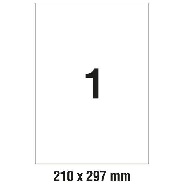 000009915_1.jpg