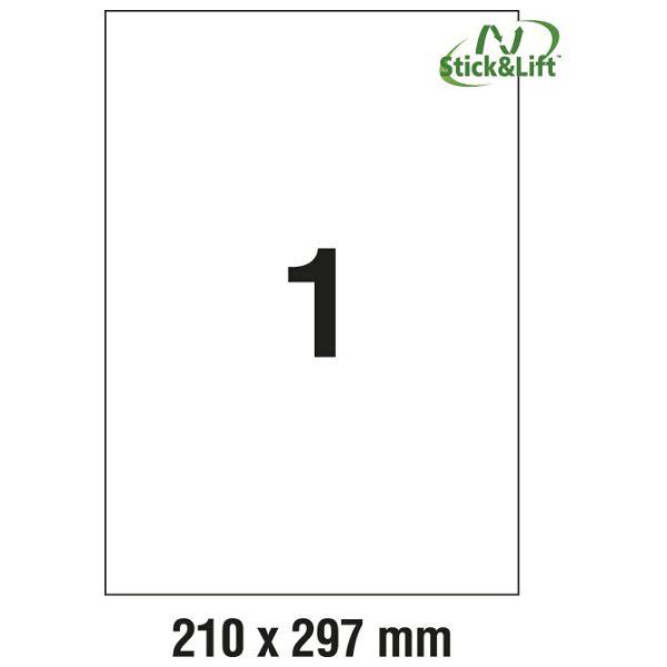 000013602_1.jpg