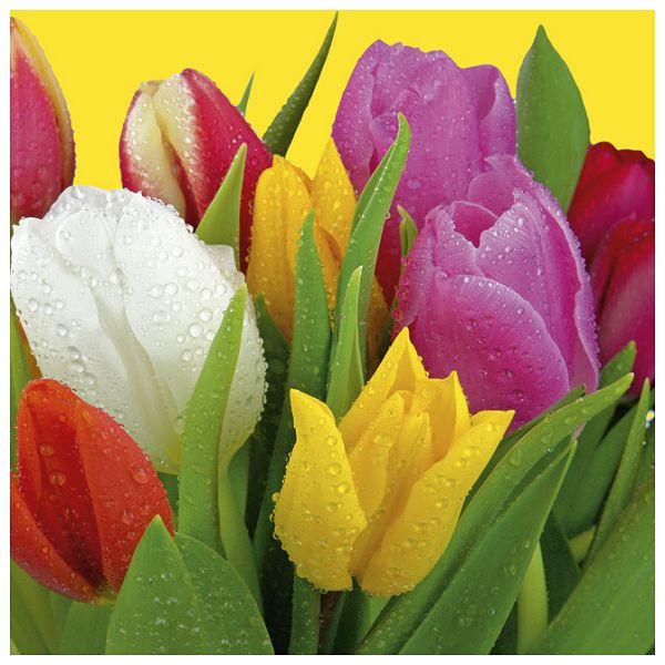 Salvete troslojne 33x33cm pk20 Bouquet of tulips Herlitz 11341419